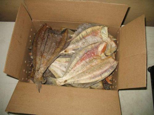 Рыба в кробке