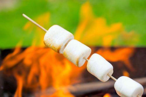Обжаривание зефира на костре