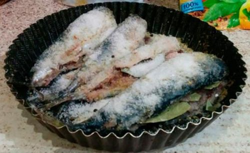 Засолка рыбы перед копчением