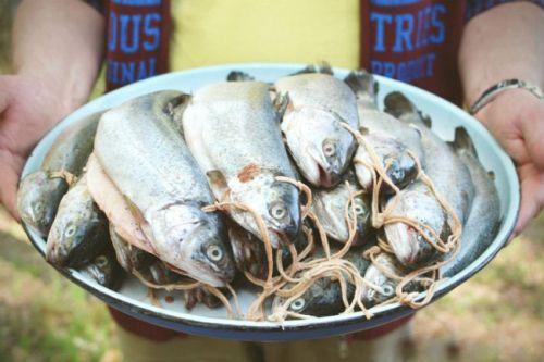 Рыба, нанизанная на бечевку