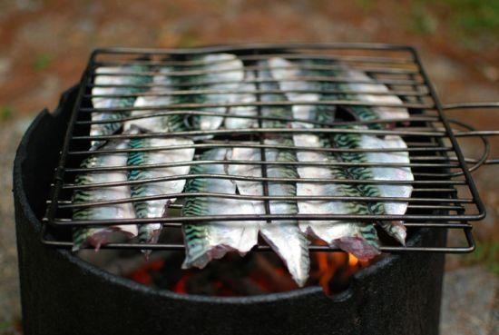 Скумбрия на мангале в решетке