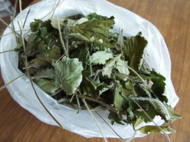Земляничные листья в пакете