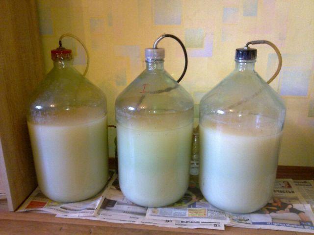Брага на молоке