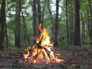 Костер в лесу