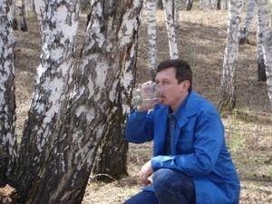 Сборка березового сока