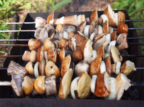 Лесные грибы на мангале
