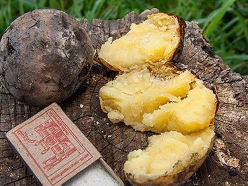 Картошка из костра с солью